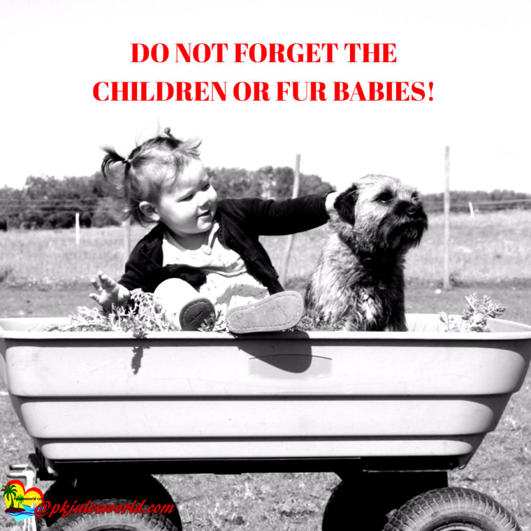 Do you Know The things NOT to Forget when Traveling with Kids? They can range from a set of extra socks to nail clippers and the family fur baby. Leave the latter at home and all hell breaks loose…