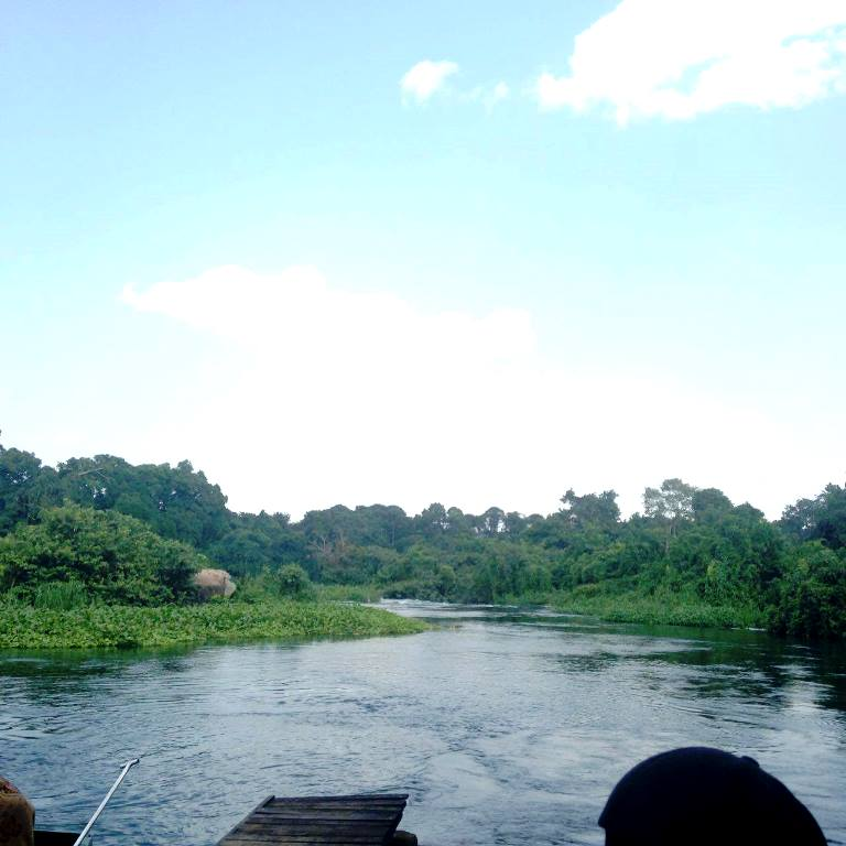 Uganda is home to 10 national parks and is also where the Nile River starts. Here are five reasons to consider Uganda for your next safari.