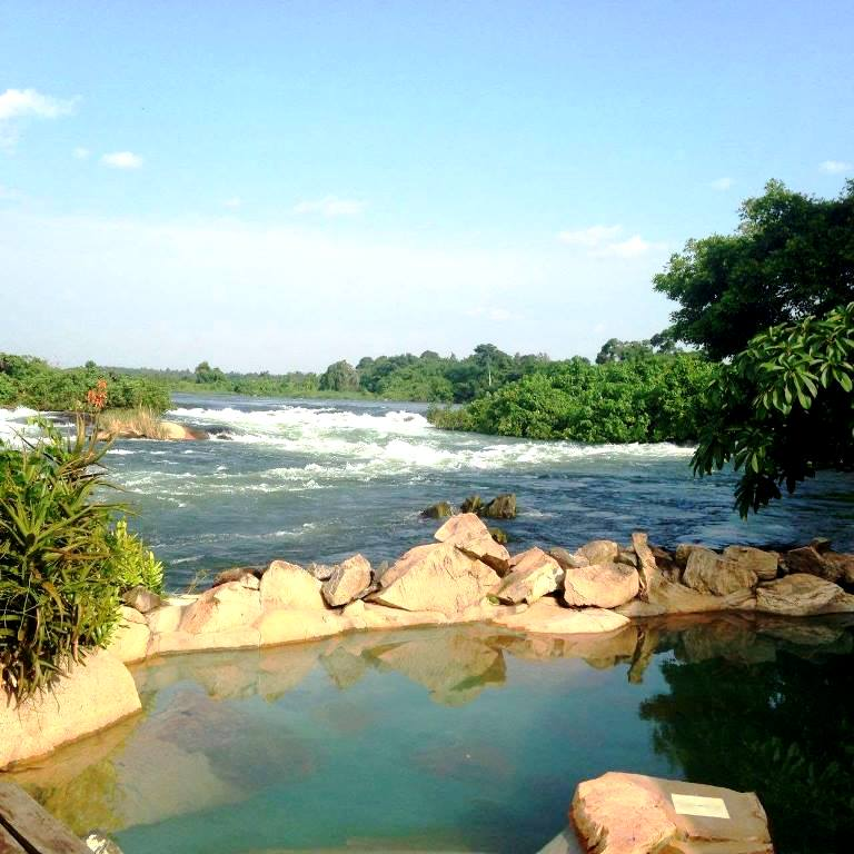 Home to 10 national parks and the source of the Nile River. Here are 7 reasons to make Uganda a Safari Destination for you. #safaridestinations