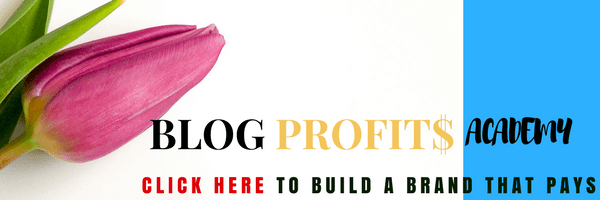 Blog Profits Academy - Create and monetize your blog, an online asset that pays you by - Andy Atsugah